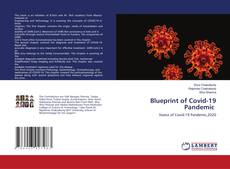 Capa do livro de Blueprint of Covid-19 Pandemic
