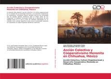 Portada del libro de Acción Colectiva y Cooperativismo Menonita en Chihuahua, México