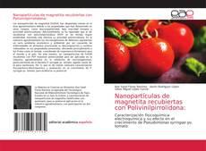 Capa do livro de Nanopartículas de magnetita recubiertas con Polivinilpirrolidona: