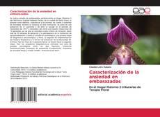 Bookcover of Caracterización de la ansiedad en embarazadas