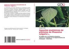 Buchcover von Aspectos anatómicos de plántulas de Phaseolus vulgaris L.,