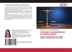 Capa do livro de Correcta imputación en un delito penal