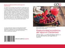 Bookcover of Productividad económica del agua en Zarzamora