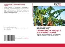 Buchcover von Condiciones de Trabajo y Precariedad Laboral