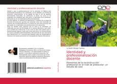 Bookcover of Identidad y profesionalización docente
