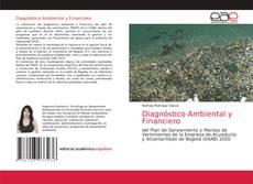 Buchcover von Diagnóstico Ambiental y Financiero