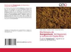 Bookcover of Morfología de Sargassum. Arribazones y cultivo en Costa Rica