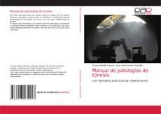 Copertina di Manual de patologías de túneles