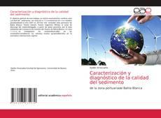 Caracterización y diagnóstico de la calidad del sedimento的封面