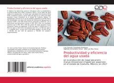 Bookcover of Productividad y eficiencia del agua usada