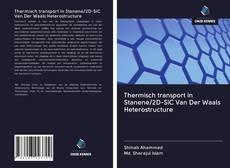 Borítókép a  Thermisch transport in Stanene/2D-SiC Van Der Waals Heterostructure - hoz