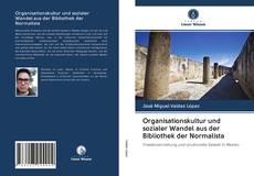 Organisationskultur und sozialer Wandel aus der Bibliothek der Normalista kitap kapağı