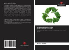 Bookcover of Biomethanization