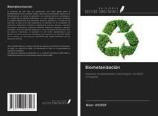 Portada del libro de Biometanización