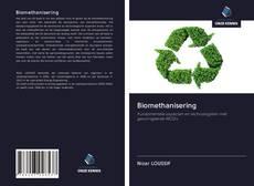 Borítókép a  Biomethanisering - hoz