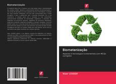 Biometanização kitap kapağı