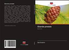 Couverture de Glande pinéale
