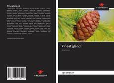Couverture de Pineal gland