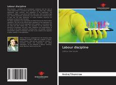Bookcover of Labour discipline