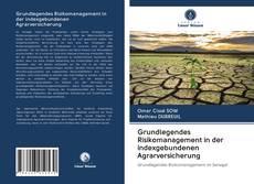 Bookcover of Grundlegendes Risikomanagement in der indexgebundenen Agrarversicherung