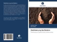 Bookcover of Stabilisierung des Bodens