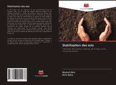 Couverture de Stabilisation des sols