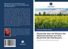 Bookcover of Pilotstudie über die Effizienz der Weizenproduktion auf dem Bauernhof der Kleinbauern: