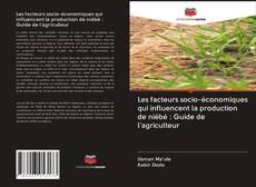 Capa do livro de Les facteurs socio-économiques qui influencent la production de niébé : Guide de l'agriculteur
