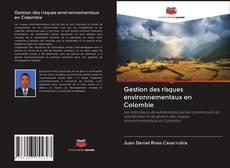 Borítókép a  Gestion des risques environnementaux en Colombie - hoz