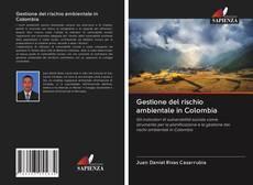 Bookcover of Gestione del rischio ambientale in Colombia