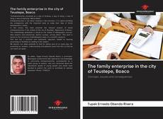 Bookcover of The family enterprise in the city of Teustepe, Boaco
