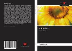 Bookcover of Pancreas
