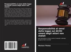 Bookcover of Responsabilità ai sensi della legge sui diritti umani degli attori non statali