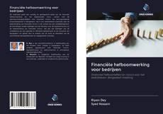Bookcover of Financiële hefboomwerking voor bedrijven