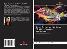 "Bookcover of From Groups and Bodies as ""Tools"" to ""Objects"" Mathematics"