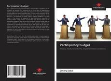 Bookcover of Participatory budget