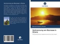 Copertina di Verbrennung von Biomasse in Ghana