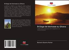 Copertina di Brûlage de biomasse au Ghana
