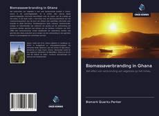 Copertina di Biomassaverbranding in Ghana