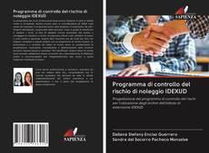 Copertina di Programma di controllo del rischio di noleggio IDEXUD