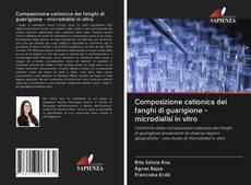 Bookcover of Composizione cationica dei fanghi di guarigione - microdialisi in vitro