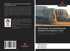 Buchcover von Lithological and petrophysical studies of terrigenous rocks