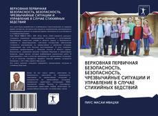 Bookcover of ВЕРХОВНАЯ ПЕРВИЧНАЯ БЕЗОПАСНОСТЬ, БЕЗОПАСНОСТЬ, ЧРЕЗВЫЧАЙНЫЕ СИТУАЦИИ И УПРАВЛЕНИЕ В СЛУЧАЕ СТИХИЙНЫХ БЕДСТВИЙ