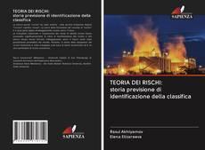 Copertina di TEORIA DEI RISCHI: storia previsione di identificazione della classifica