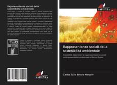 Copertina di Rappresentanze sociali della sostenibilità ambientale