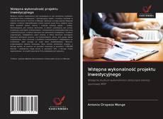 Bookcover of Wstępna wykonalność projektu inwestycyjnego