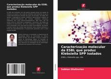 Copertina di Caracterização molecular da ESBL que produz Klebsiella SPP isolados