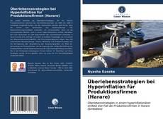 Bookcover of Überlebensstrategien bei Hyperinflation für Produktionsfirmen (Harare)