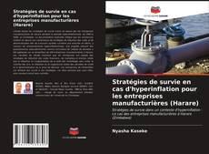 Обложка Stratégies de survie en cas d'hyperinflation pour les entreprises manufacturières (Harare)