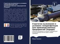 Borítókép a  Стратегии выживания в условиях гиперинфляции для производственных предприятий (Хараре) - hoz